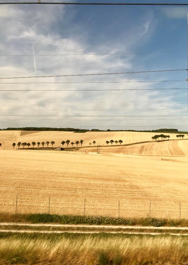 TGV - printemps 2019